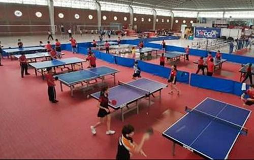 Liga de Tenis de Mesa | Norte de Santander